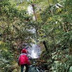 Curug Palasari Air Terjun Eksotis Di Kaki Gunung Sawal